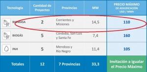 Biomasa: Empresa misionera se adjudicó un contrato para proveer energía renovable