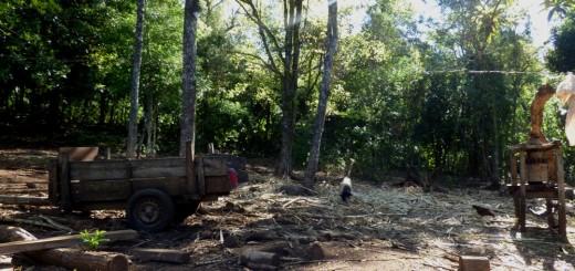 """En Cerro Corá piden una escuela secundaria agrotécnica por un """"futuro mejor en las chacras que producir leña y carbón"""""""
