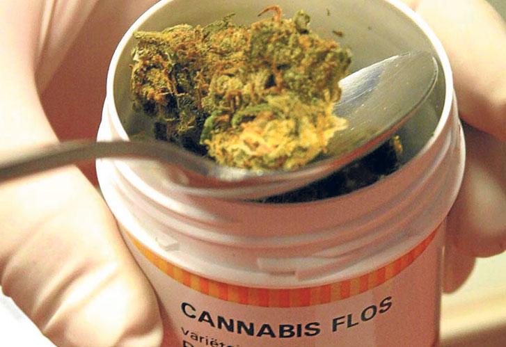 Especialista asegura que no hay pruebas suficientes de los beneficios del cannabis medicinal