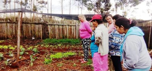 Agricultura Familiar: destacan acciones a favor de la equidad de géneros en el ámbito rural