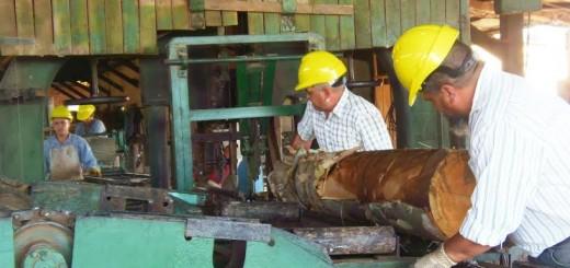 Carpintería reactivada de San José vende los muebles que fabrica en Posadas