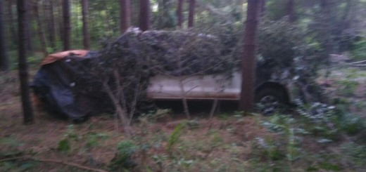 Encontraron oculta en un pinar, tapado con ramas y bolsas, una camioneta robada