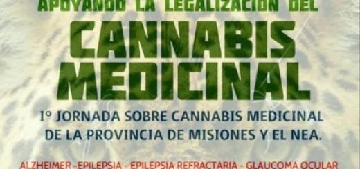 En Puerto Rico debatirán sobre el uso del cannabis medicinal