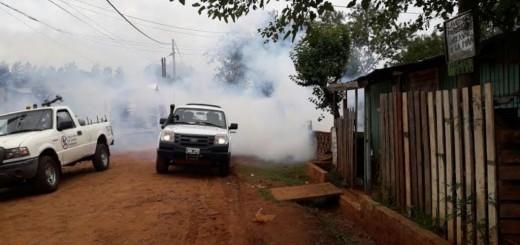 Posadas declara el alerta preventiva por el dengue