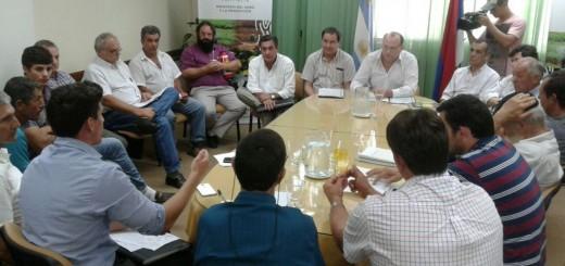 Yerbateros exigieron a la Nación medidas para regular el mercado y evitar sobreoferta de hoja verde
