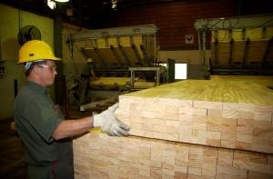 Misiones podría recuperar unos 30 mil empleos en el sector forestal de volver a los niveles de exportaciones que perdió desde 2007