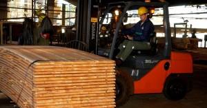Destinarán 10 millones de pesos a la capacitación de PyMEs de la cadena de valor foresto-industrial del país