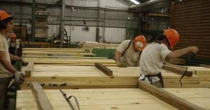 La abrupta caída de las ventas es la principal preocupación de la industria maderera al cierre de 2016