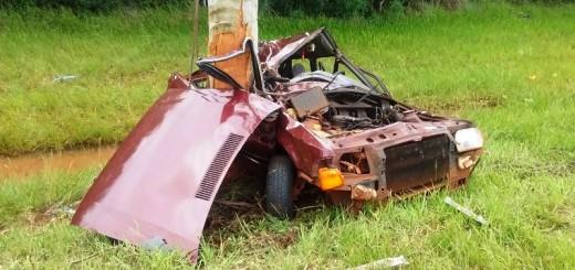 Se despistó un auto Apóstoles y luego dio contra un árbol: el conductor murió en el acto