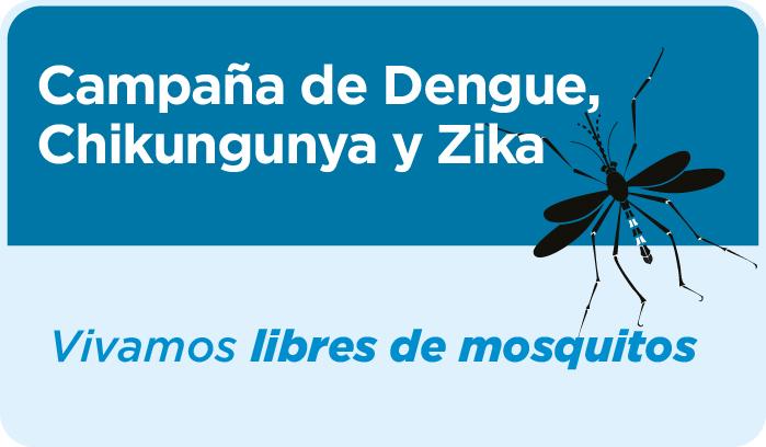 Desde Nación renuevan pedido para mantener las acciones de limpieza en hogares contra el mosquito transmisor del dengue