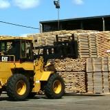 Inversores americanos recorrieron plantaciones y aserraderos de la provincia con interés concreto de negocios forestales