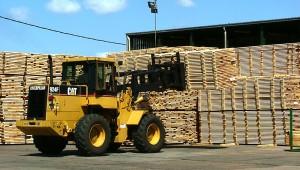 Forestales y madereros esperan reactivación de las exportaciones para evitar la sobreoferta y caída de precios