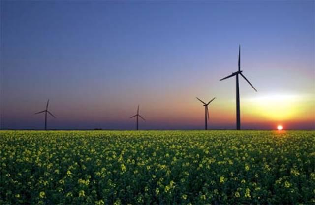 Utilizan los desechos para producir energía limpia