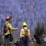 Chile sufre el mayor desastre forestal en su historia y pide ayuda internacional por incendios