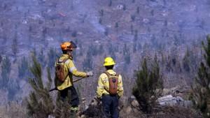 Chile: Mueren 3 brigadistas en incendio forestal en la región de Maule