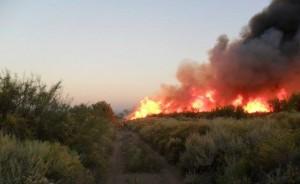 Mendoza bajo fuego: hay 12 focos de incendios forestales en cinco departamentos