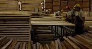 Capacitación, competitividad y logística serán temas de agenda en las empresas madereras en 2017