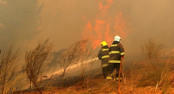 Chile: fueron controlados más de la mitad de los focos de incendios activos