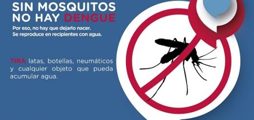 Refuerzan operativos de prevención para evitar la reproducción del mosquito transmisor del dengue