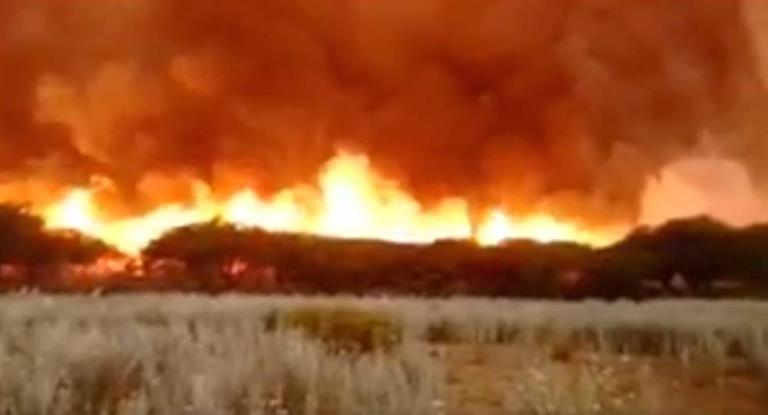 Incendios rurales en el centro del país arrasaron más de 600 mil hectáreas
