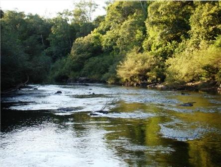 La reserva Rubichana se incorpora al sistema de áreas naturales protegidas de Misiones
