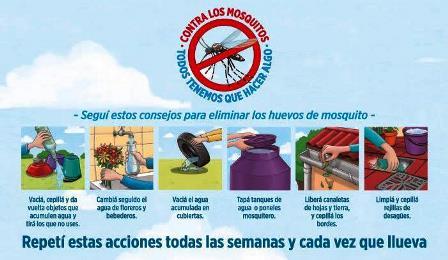 Todos los días podemos hacer simples acciones para evitar que el mosquito Aedes aegypti se reproduzca