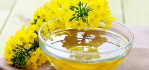 ¿Por qué deberíamos consumir aceite de canola?