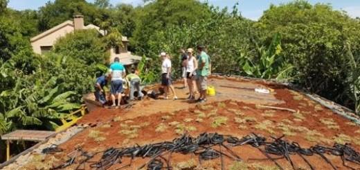 """Realizaron taller sobre """"techo verde"""" en Posadas"""