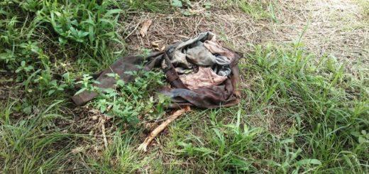 Macabro: hallaron restos óseos en una chacra de Bonpland