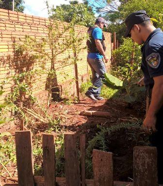 Hallan planta de marihuana en una vivienda de Campo Grande