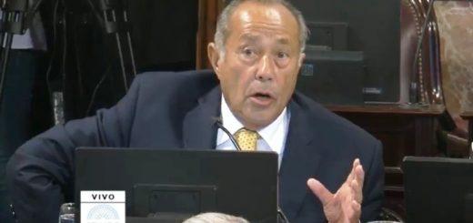 VIVO: El Senado trata el proyecto para autorizar el uso de cannabis medicinal
