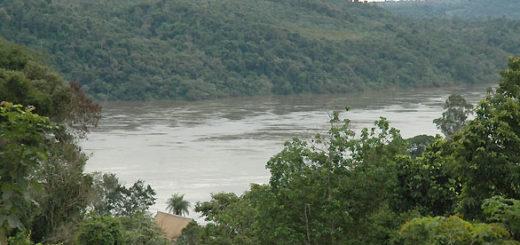 Eldorado: hallaron flotando en el río Paraná el cuerpo de un hombre ejecutado de un balazo