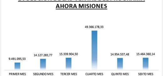 El programa Ahora Misiones generó ventas por más de 118 millones de pesos durante los seis meses que estuvo en vigencia