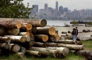 Se intensifica la disputa comercial entre Estados Unidos y Canadá ante el anuncio de Trump de un nuevo arancel a la madera de coníferas importada