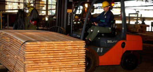 ¿Cuánto cuesta reactivar las exportaciones de madera de Misiones?