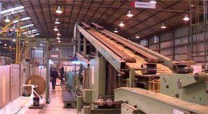 La industria de celulosa y papel en Argentina, potencial y nuevos desafíos