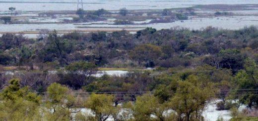 El 37% de las empresas agropecuarias sufrieron inundaciones