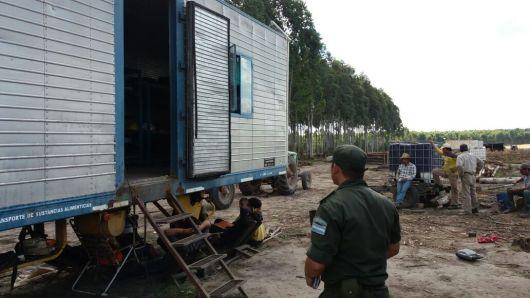 Paso de los Libres: rescataron a trece trabajadores de un campo dedicado a la cosecha forestal