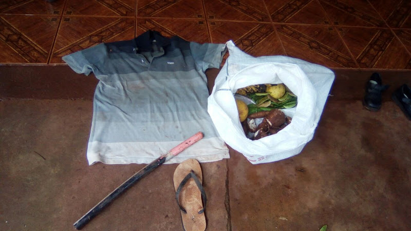 Eldorado: sorprendió a dos ladrones en su chacra y arremetió a manguerazos contra uno de ellos