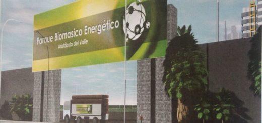 Misiones hace punta en la utilización de biomasa para producir carbón activado y generar energía