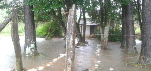 Protección Civil asistió a los damnificados por las lluvias en Posadas y en el interior