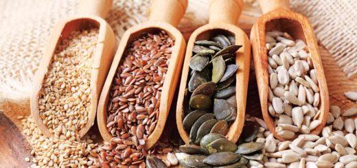 Nutrición: ¿Por qué deberíamos consumir semillas habitualmente?