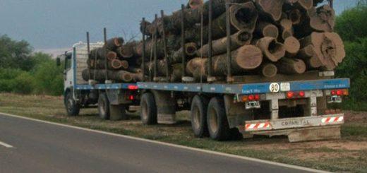 El mal clima ya paralizó la actividad forestal en la zona oeste de Chaco