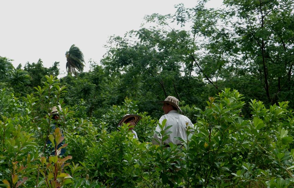 Nueva Especialización en Desarrollo Territorial Rural con título de la UNaM