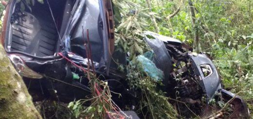Un joven murió tras despistar con su auto y chocar violentamente contra un árbol entre Puerto Iguazú y Cataratas