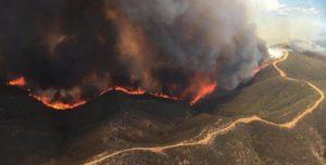 EEUU: Incendios forestales arrasan zonas de Utah y Arizona en medio de la ola de calor