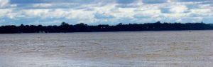 Corrientes: Estiman al 2021 la puesta en marcha de la fábrica de celulosa y papel Ysyry Cuatiá que se instalaría en Ituzaingó
