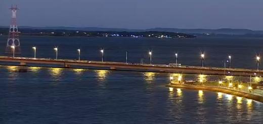 CÁMARA EN VIVO: Así está el regreso de Paraguay en el puente internacional Posadas-Encarnación