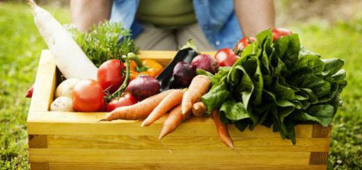Nutrición: ¿Qué son los alimentos orgánicos y cuales serían sus beneficios para la salud?