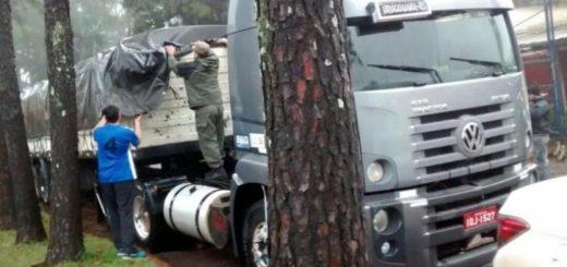 Interceptaron un camión con 4 toneladas de marihuana de Oberá